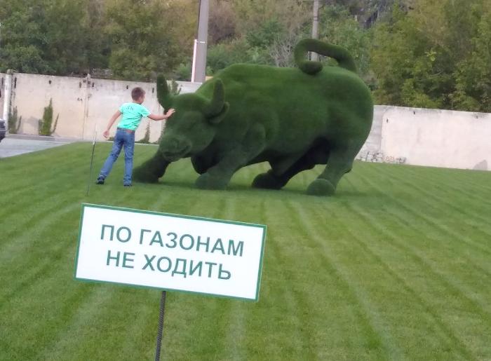 Фото по газонам не ходити
