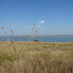 Куяльник став курортом державного значення