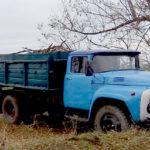 Незаконна вирубка дерев Августівською сільрадою – збитки 37 тис. грн