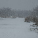 Снігопад накрив Одеську область