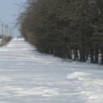 Гаряча телефонна лінія Служби автомобільних доріг Одеської області