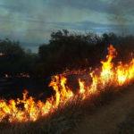 В Одеській області надзвичайна пожежна небезпека