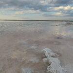 Куяльницький лиман на межі повного зневоднення