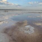 Національний природний парк «Куяльницький»