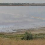 Проблеми Куяльницького лиману. Розробка документації по розчистці річки Великий Куяльник